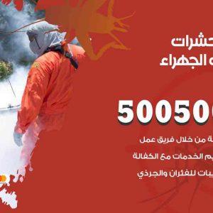 مكافحة حشرات اسطبلات الجهراء / 50050647 / شركة مكافحة الحشرات والقوارض