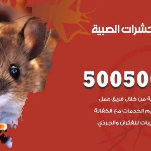 مكافحة حشرات الصبية / 50050647 / شركة مكافحة الحشرات والقوارض