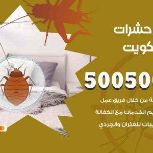 مكافحة حشرات النويصيب / 50050647 / شركة مكافحة الحشرات والقوارض