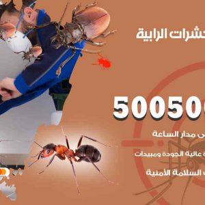 مكافحة حشرات الرابية / 50050647 / شركة مكافحة الحشرات والقوارض