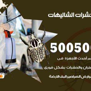 مكافحة حشرات الشاليهات / 50050647 / شركة مكافحة الحشرات والقوارض