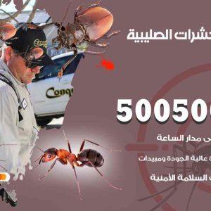 مكافحة حشرات الصليبية / 50050647 / شركة مكافحة الحشرات والقوارض