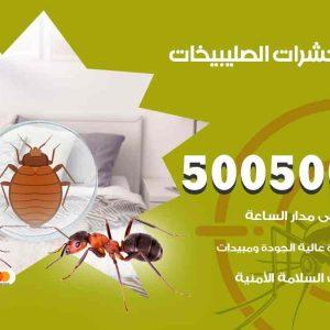مكافحة حشرات الصليبيخات / 50050647 / شركة مكافحة الحشرات والقوارض
