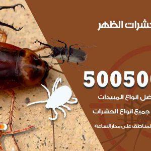 مكافحة حشرات الظهر / 50050647 / شركة مكافحة الحشرات والقوارض