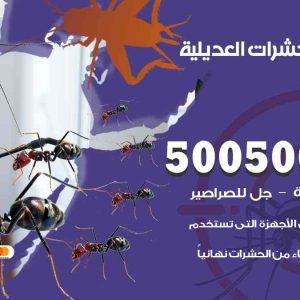 مكافحة حشرات العديلية / 50050647 / شركة مكافحة الحشرات والقوارض