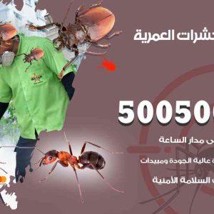 مكافحة حشرات العمرية / 50050647 / شركة مكافحة الحشرات والقوارض