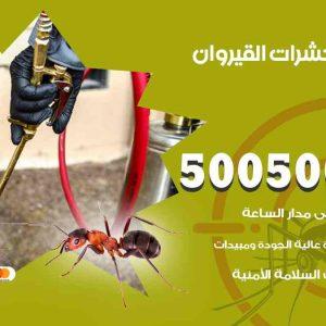 مكافحة حشرات القيروان / 50050647 / شركة مكافحة الحشرات والقوارض
