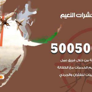 مكافحة حشرات النعيم / 50050647 / شركة مكافحة الحشرات والقوارض