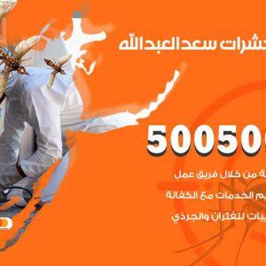مكافحة حشرات سعد العبدالله / 50050647 / شركة مكافحة الحشرات والقوارض