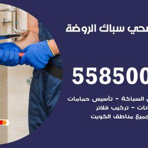 فني سباك صحي الروضة / 55850065 / معلم ادوات صحية