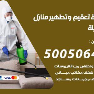 شركة تعقيم وتطهير منازل العقيلة / 50050641 / تعقيم منازل من فيروس كورونا